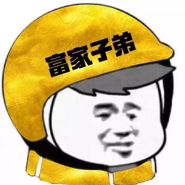 戴头盔表情包图片