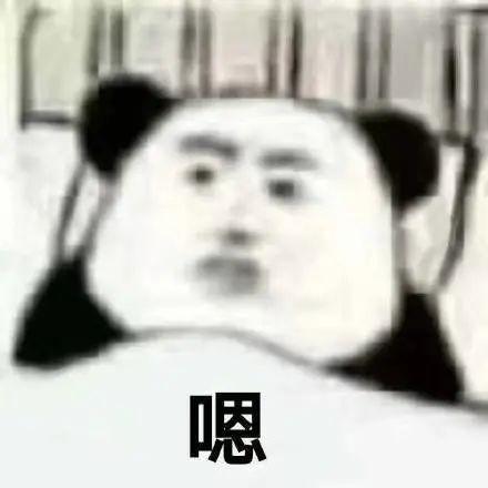 熊猫头万能聊天表情包 v1.0
