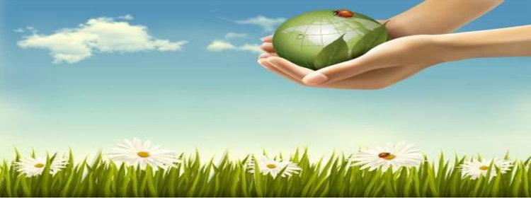 环保赚钱app