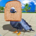 鸽子鸟模拟器中文版