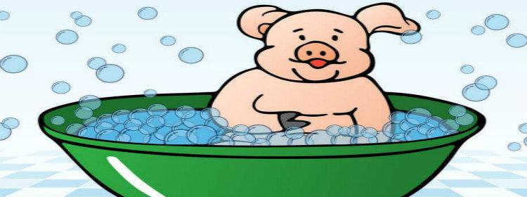 养猪赚钱游戏合集