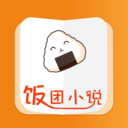 饭团小说app v6.3.1