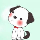 小狗交流器